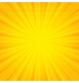 orange sunburst banner vector image
