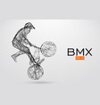 silhouette of a bmx rider vector image vector image