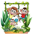 Three monkeys playing vector image vector image