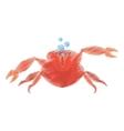 hand drawing red crab sea life marine bubbles vector image