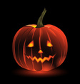 Cheerfull Halloween Pumpkin vector image