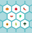 flat icons melon slice cabbage lettuce and other vector image vector image