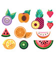 flat sliced exotic fruits and tropical berries vector image