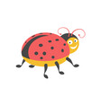 funny ladybug with black spots onred wings vector image vector image