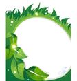 Green leaves and grass vector image vector image