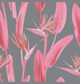 grey background pink leaves and blossom ornament vector image