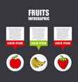 infographic presentation of fruit vector image