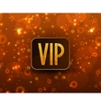text VIP vector image