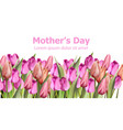 tulips card watercolor mother day holiday vector image vector image