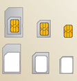 Types of SIM cards vector image vector image