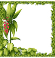 A green frame with a flower vector image vector image