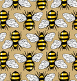 bee honey pattern vector image vector image