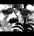 black and white seamless pattern tropical plant vector image vector image