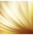 Gold abstract swirl vector image vector image