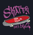 skateboard with graffiti style sign skater vector image vector image