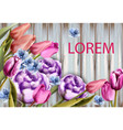 spring bouquet on wooden background tulips and vector image vector image