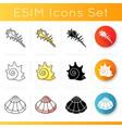 various seashells icons set vector image vector image