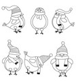 christmas birds collection for coloring book vector image vector image