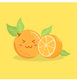 Cute Orange Fruit Face vector image vector image