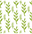 green stems and leaves seamless pattern on white vector image vector image