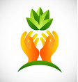 hands protecting plants icon design vector image vector image