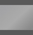 perforated silver metalic background vector image vector image