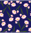 pink indian lotus on navy blue background vector image vector image