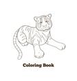 Tiger cartoon coloring book vector image vector image