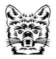 fox head tattoo art vector image
