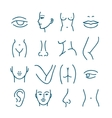 Human body parts line icons for plastic or vector image vector image