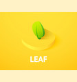 leaf isometric icon isolated on color background vector image