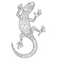 Lizard coloring book for adults vector image vector image