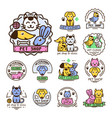 pet badge graphic sticker set domestic vector image vector image