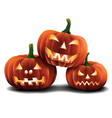 Pumpkins Isolated vector image vector image