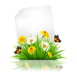 Sheet of paper with grass and spring flowers vector image vector image
