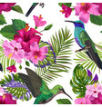 tropical seamless pattern hummingbirds flowers vector image vector image