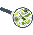 bacterial microorganism in a magnifier bacteria vector image