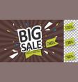 big sale mega vector image vector image