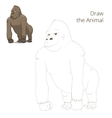 Draw the animal gorilla educational game vector image vector image
