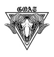goat head tattoo designs vector image