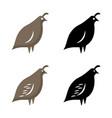 quail vector image vector image