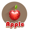 red apple icons triangles vector image