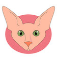 sphinx cat with green eyes on white background vector image vector image