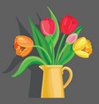 tulips grey background vector image
