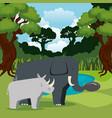 wild animals in the jungle scene vector image vector image