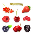 Sweet berries set of high quality vector image
