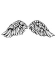 angel wings bird wings collection cartoon hand vector image vector image