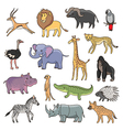 animals africa vector image