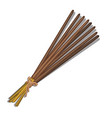 eastern incense sticks isolated on white vector image vector image