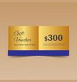 golden gift voucher design template vector image vector image